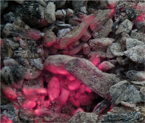 Cuocere col barbecue